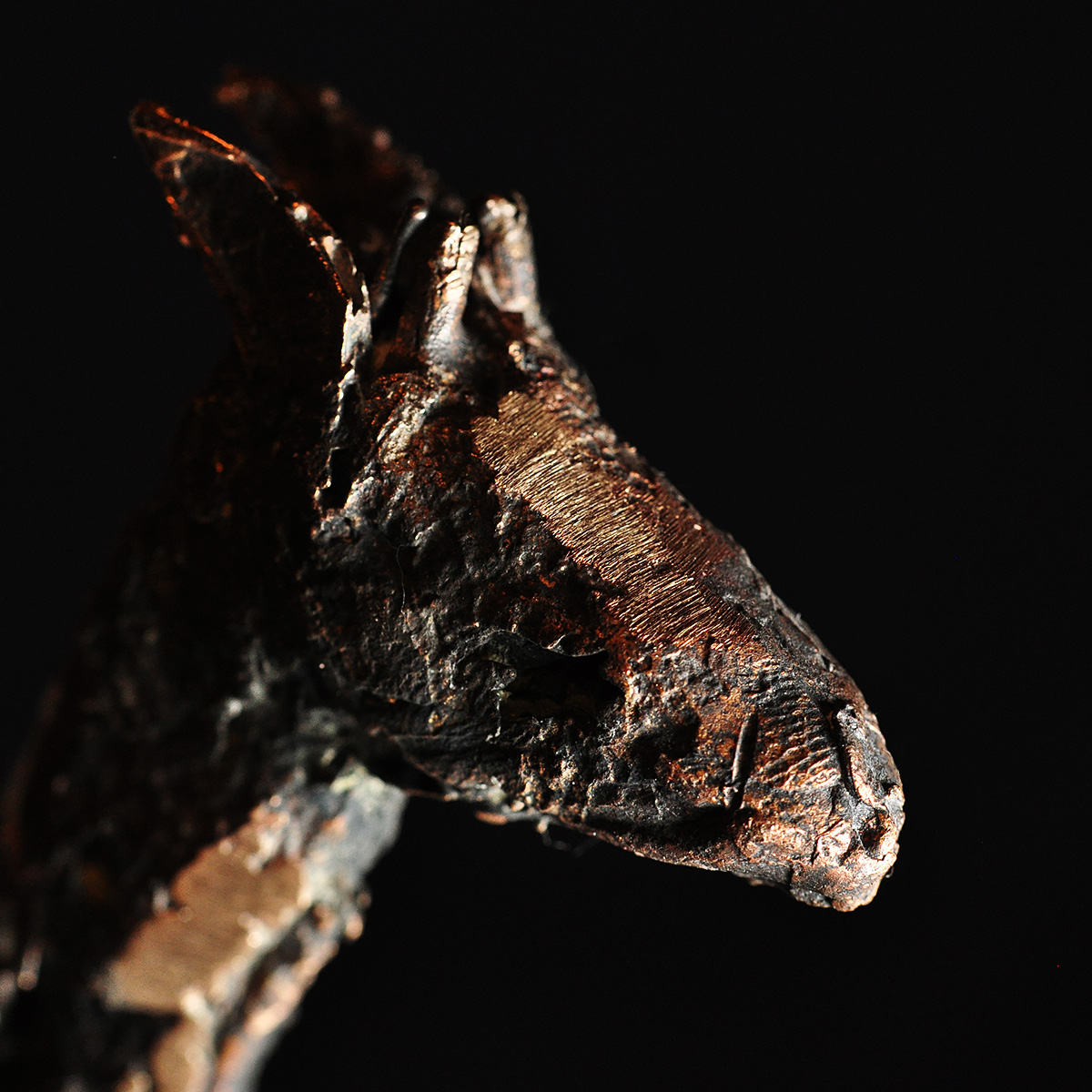 Bronzeskulptur af giraf. Detalje af hoved.