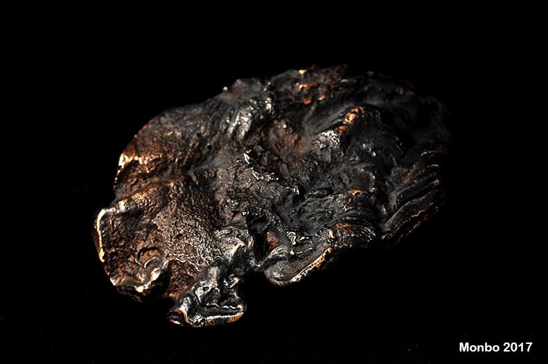 Østersskaller i oxyderet bronze.